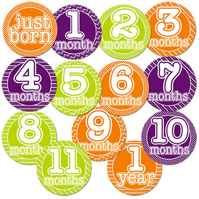 Gender Neutral Monthly Milestone Stickers Baby Shower Newborn Gift Boy Girl