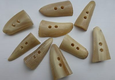 Genuine Real Horn 1/2 Round Toggles/Buttons. Two Hole  Size M. Col. Ivory