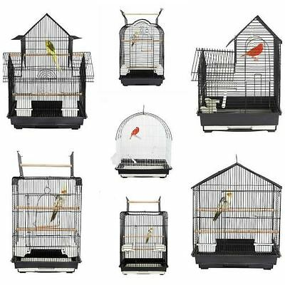 Rainforest Fun Cages Collection