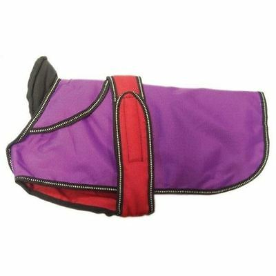 "Danish Design Dog Coat 2 in 1 - Purple - 50cm (20"")"