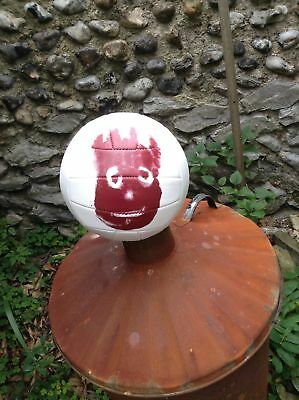 Volleyball WILSON from the film Castaway. By Wilson