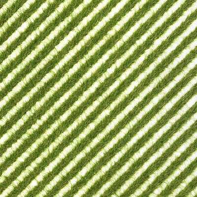 Tufts or flexible verge of spring grass 148x105mm – Busch 1342 – free post F1