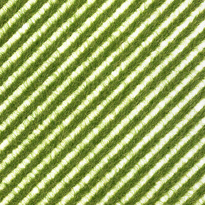 Tufts or flexible verge of spring grass 148x105mm – Busch 1342 – free post