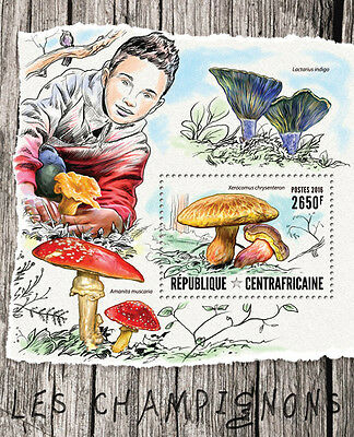 Central African Republic 2016 MNH Mushrooms 1v S/S Champignons Fungi Stamps