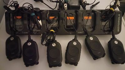 6x Motorola CLP446 Licence Free Radios with 6 bank charger