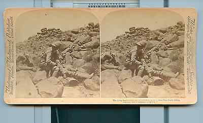Boer War South Africa Stereoview 1900 Stereo Card Death Bugler UNDERWOOD