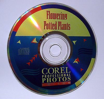 Flowering Potted Plants Corel Professional Photos CD Rom PCD Format