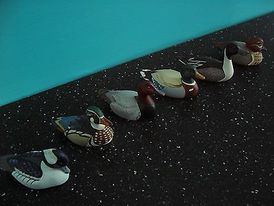 Avon Collector Duck Series Set of 6 Vintage Collection