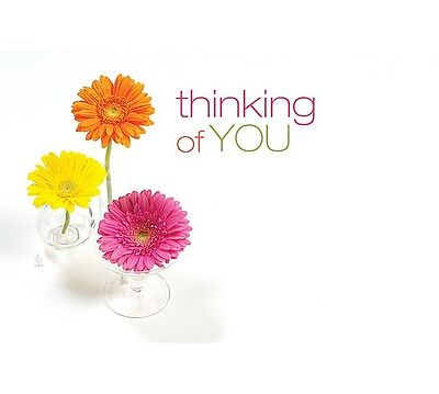 "50ct. Pretty ""Thinking of You"" Flowers Blank Florist Enclosure Cards Small Tags"