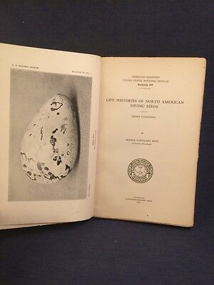 1919 Life Histories North American Diving Birds US National Museum Bulletin 107
