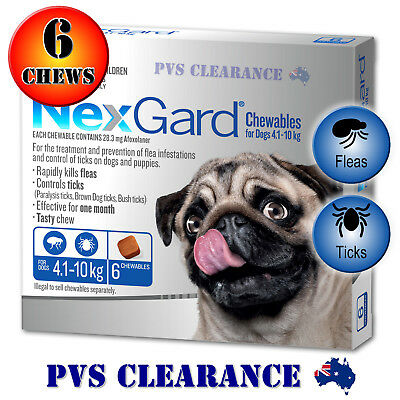 Nexgard Blue 6 for Small Dogs 4.1 - 10 kg 6-Pack Nexguard Flea & Tick Chewable