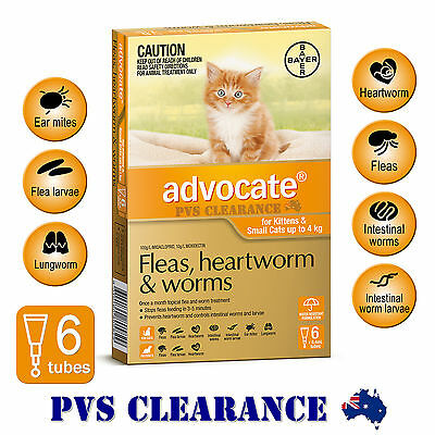 Advocate Orange for Cats & Kittens Up To 4 kg -  6 Pack CLEARANCE - Kitten Flea