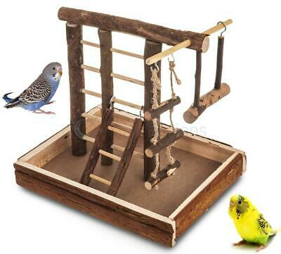 Small Natural Wooden Bird Play Ground Playground Budgie Ladder Swing Perch Pet