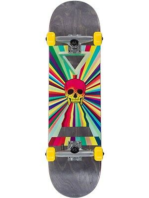 Globe Ancient Future Skull China Heights - 8.25 Inches Skateboard Complete