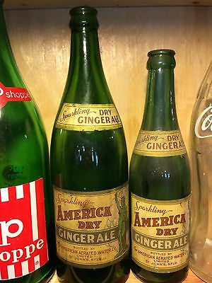 Newfoundland American Dry Soda Bottle Pair Rare Paper Labels