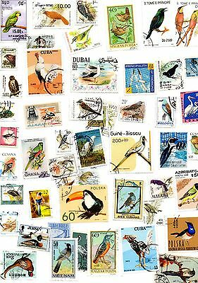 Birds mix of 50 different postage stamps (10)