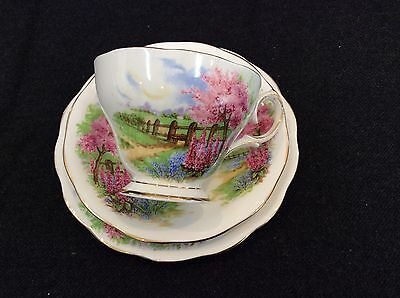 Queen Anne Meadowside Trio Tea Cup Sauce And Cake Plate Vintage