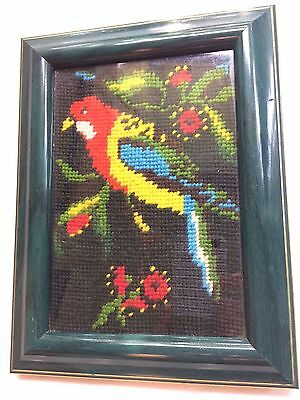 Australian Eastern Rosella Bird Cross Stitch. Hand Made And Framed. Very Unique!
