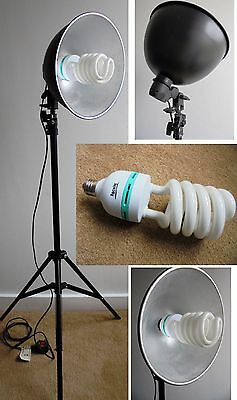 ROCWING Studio Day Light Bulb + Adjustable Stand (Collect Northamptonshire)