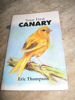 Your First Canary von Eric Thompson