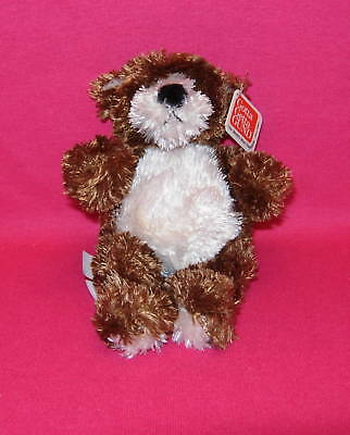 """Gund  MINI BEAR Dark brown and cream 6""""  New with tags"""