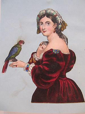 19th CENTURY, Cut-Out Coloured Print, A LADY HOLDING A PARROT
