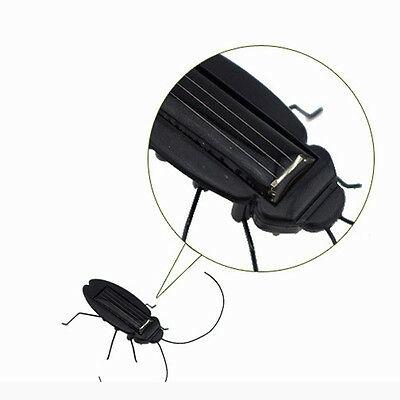 School Insect Bug Solar Power Energy Cockroach Teaching Fun Gadget Kids Gifts