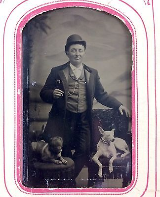 1860's Antique Tintype of Well Dress Man in Hat with Dogs Tinted Dog Seated