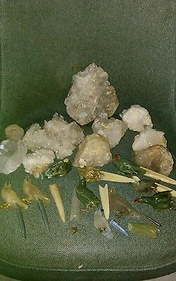 Parrot  Macaw on Quartz Crystal lot parts and pieces -Peter Muller ?