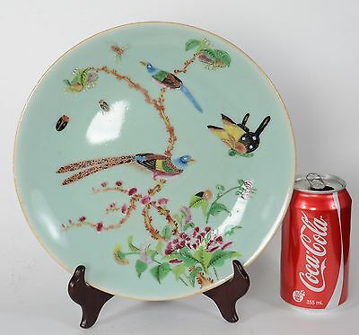 Antique Chinese Porcelain Celedon Enamel Bird & Butterfly Plate Qing Dynasty