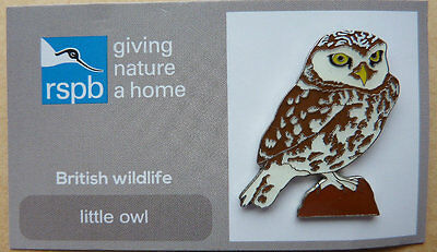 RSPB  New little owl  Pin Badge / Birds