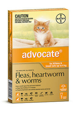 Advocate for Small Cats Up To 4kg Worming  Flea Treatment for Cats Free Shipping