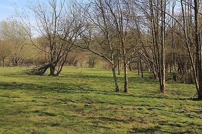 Land for sale in England ~  Ninfield East Sussex Plot 3B1A