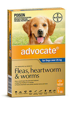 Advocate for Dogs Over 25kg Worming and Flea Treatment for Dogs Free Shipping