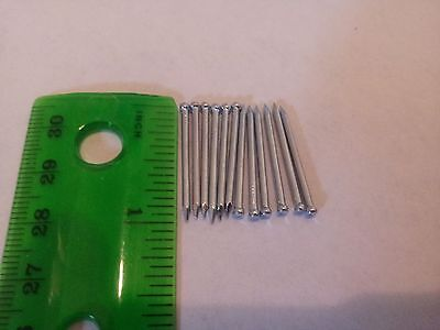 10 Zinc plated Nails 1 Inch hardware wire brad nail finish paneling exterior