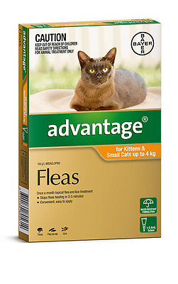 Advantage for Cats Orange 0-4kg Flea Treatment for Cats Free Shipping