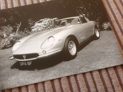 Ferrari 275 GTB4 Photograph.  c1989.  Beautiful