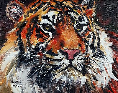 "Signed art print 10x8 inches ""TIGER"" from original oil painting - PROCTOR ART."