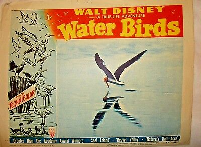 Disney's Water Birds Original Release Lobby Card