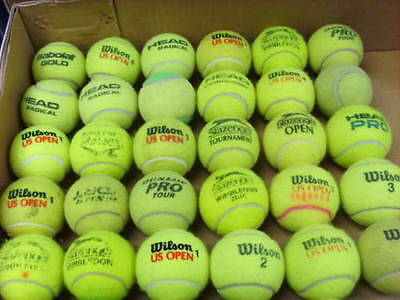 Used Tennis Balls x24 Ideal for Dog Walkers (2 dozen)