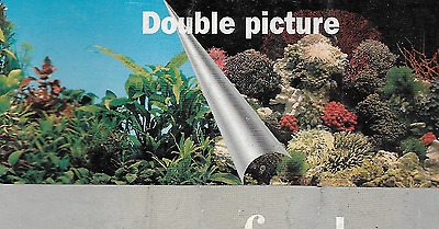 poster fond d aquarium 9054 double faces  120x 50 cm de hauteur