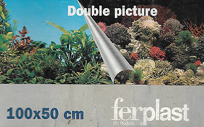 poster fond d aquarium 9050 double faces  100x 50 cm de hauteur