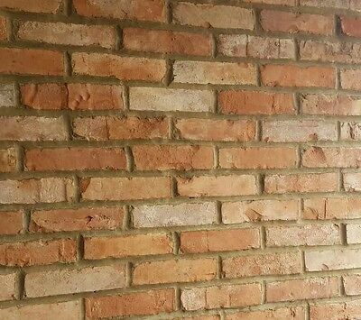 Brick Slips Cladding Wall Tiles Samples (Pack Of 3)
