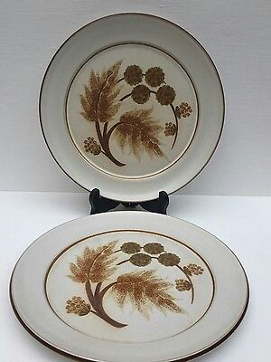 Denby Stoneware Made In England Cotswold X 2 Dinner Plates