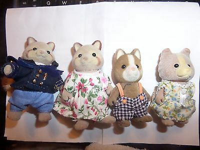 Sylvanian families racoon family
