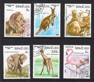 Cambodia 6x animal issues see scans x2