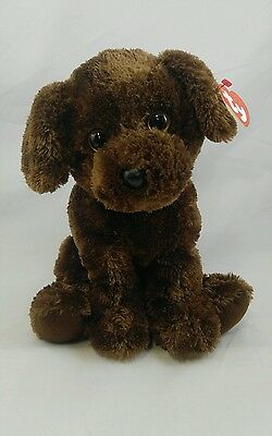 TY Classic Plush - HARLEY the Brown Dog (10.5 inch) -Plush Stuffed Animal FF