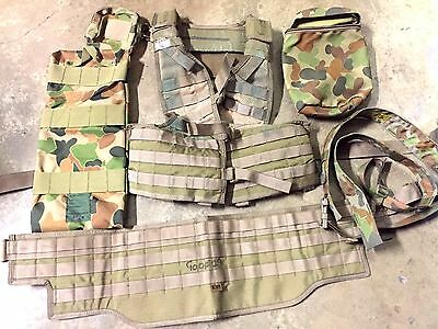 AUSTRALIAN SPECIAL FORCES SOLDIER, sord, platatac chest rig and pouches