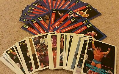 WWF Vintage 1990 Trading Cards