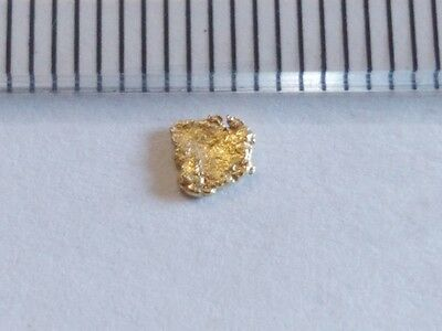 NATURAL PURE GOLD NUGGETS   Goldnuggets pepite d'or pepita d'oro